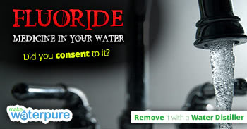 Learn about Fluoride